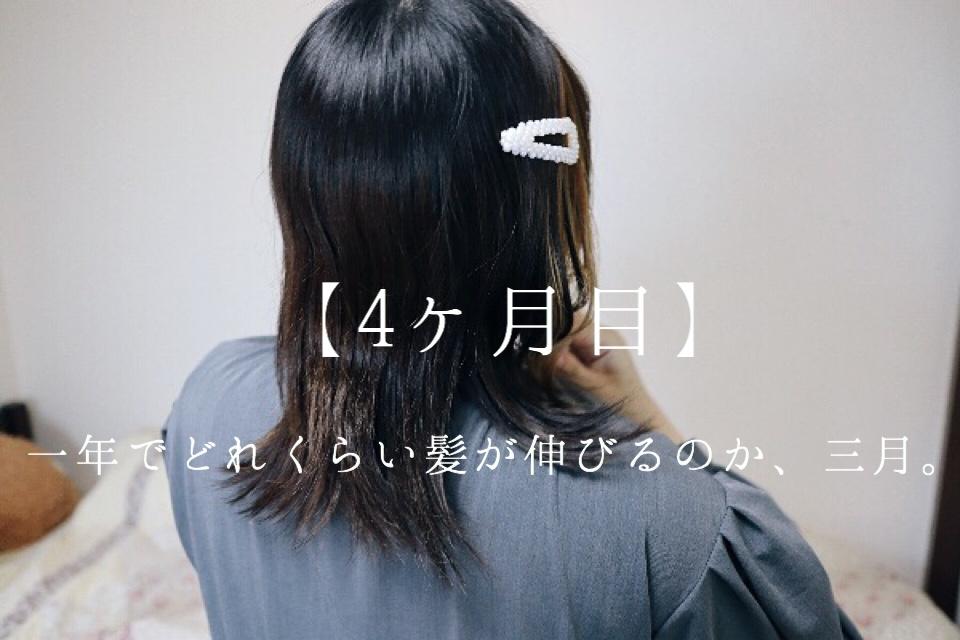 一年でどれくらい髪が伸びるのか、3月。【4ヵ月目】