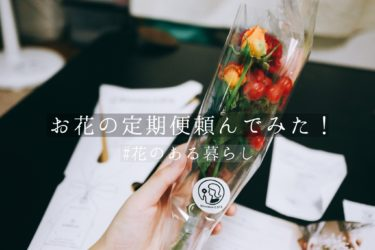 【Bloomee LIFE】ポスト投函のお花の定期便を頼んでみた!お花がとても可愛い!!