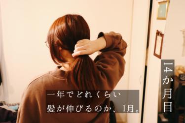 一年でどれくらい髪が伸びるのか、1月。【14ヵ月目】