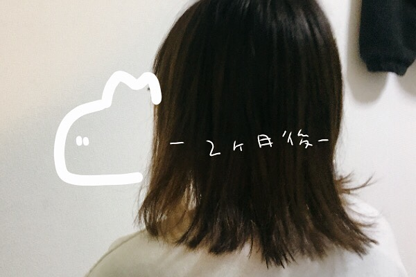 一年でどれくらい髪が伸びるのか、1月。【2ヵ月目】