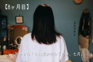 一年でどれくらい髪が伸びるのか、7月。【8ヵ月目】